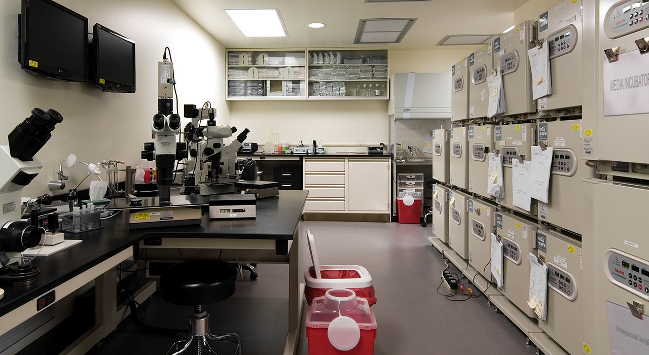 Zouves Fertility laboratory space